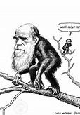 Darwin - tree